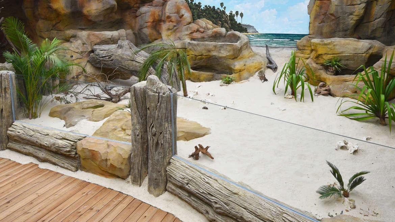 Die Leguaninsel